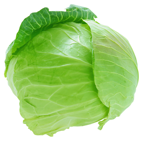 Cabbage (पत्ता गोभी)